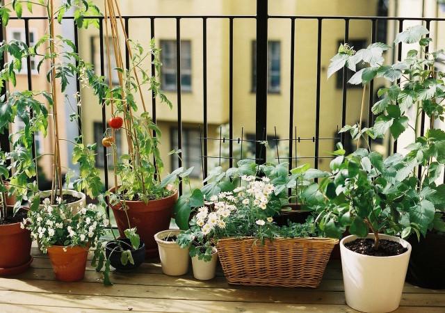 Inspiracje: balkon