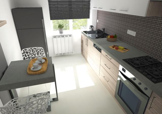 Gliwice / kuchnia oraz łazienka / 20m2